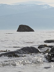 6354 A rock in the straits (Andy - Busyyyyyyyyy) Tags: 20161105 aaa aberlleiniog bbb boulders menaistraits mmm ripples rocks rrr sss water wavelets www