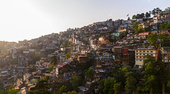 Shimla Levels (Ash and Debris) Tags: view sun urban houses dusk sunset trees india cityscape levels architecture sunlight shimla hill city light