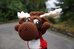 DSC01043 (The Crochet Crowd) Tags: crochetmoose amigurumi moose crochet doll alaska britishcolumbia thecrochetcrowd michaelsellick jeannesteinhilber danielzondervan crochetcruise mooseontheloose