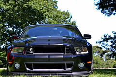 AGGRESSIVE (WFoxPhotography) Tags: ford scary massive shelby mustang aggressive sick gt500