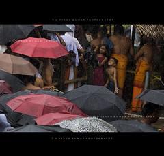Hug Me! (Vinod Kumar TG) Tags: rain kids kerala monsoon raindrops kannur umberla kottiyoor d700 vinodettanphotography vyshakholsavam