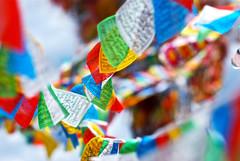 plegarias al viento (GMH) Tags: china viaje asia prayer viento flags colores banderas budismo budism plegarias ltytrx5
