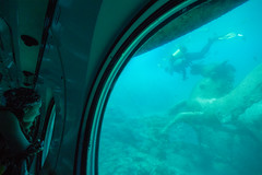 Under the Sea (Stephen Lioy) Tags: family coral tour dive egypt scuba diving submarine tropical reef excursion hurghada sinbad