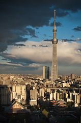 Tokyo Skytree (tom-seikatsu) Tags: japan tokyo  asakusa  skytree