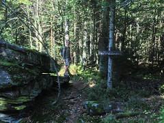 The local Rock (alexander balogh) Tags: schwarzwald badwildbad 2013 pentaxk5