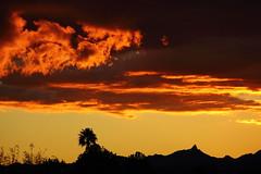 Sunset 11 24 2013 #10 (Az Skies Photography) Tags: november sunset arizona sun rio set skyscape eos rebel twilight dusk az rico 24 nightfall 2013 riorico t2i 112413 skyarizona skylinearizona 11242013 skyscaperio