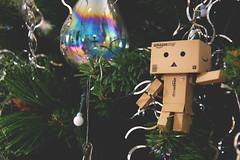 Day 2 // Adjusting the Christmas Tree (lorenzoviolone) Tags: christmas light party tree glass ball project actionfigure japanese reflex amazon nikon fav50 box christmastree led transparent dslr holidayseason danbo appleaperture fav10 fav25 danboard d5200 nikond5200 flickr:project=12daysofdanbo