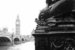 Con pesce (Morbidtrevi) Tags: blackandwhite bw london tower clock big ben parliament bigben clocktower londra houseofparliament 2013