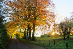 Caen Hill Sunday Sunrise 2013 - November (thewisitmaster) Tags: sunrise hill sunday locks avon caen kennet 2013