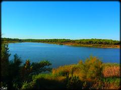 Laguna del Portil (Huelva) (sky_hlv) Tags: espaa beach andaluca spain huelva playa lagoon laguna pinares costadelaluz puntaumbra elportil oceanoatlntico reservanatural lagunadelportil