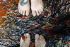 (danielle kiemel) Tags: winter friends people feet me nature water river outdoors nationalpark movement stream flickr friendship happiness australia august waterfalls nsw newsouthwales centralcoast tatoo vicki 50mmf14 tranquillity birdtattoo somersby 2013 somersbyfalls daniellekiemel nikond5000