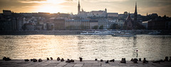Shoes on the Danube Promenade (Markus Kolletzky) Tags: sunset river shoe holocaust memorial remember budapest danube mahnmal nationalgeographic erinnerung