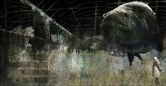 81 l'idee (laboratoire de l'hydre) Tags: city art animal collage dark factory image decay assemblage dream abandon dada impressions baroque bela exploration campagne impression brouillard forêt brume abandonned artiste fabrique abstrait création bestiaire desespoir celestes imaginaire poème cités décombres altéré lhydre
