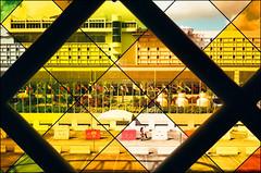 terminal - miami (chirgy) Tags: window airport couple pattern crossing florida miami terminal flags diamond mia greens frame yellows reds miamiinternationalairport 1326 voigtlanderbessar fujisuperior400 autaut 00900 5f95