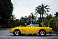 1967 Ferrari 275 GTB/4S NART Spyder (Matthew C. Photography) Tags: 2 italy classic photography spider team italian nikon matthew 10 c north ferrari racing spyder american stunning 1967 rare millions valet 275 v12 2014 nart cavallino d3200 gtb4s