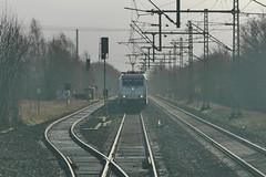 P1500604 (Lumixfan68) Tags: eisenbahn 185 bombardier txl züge traxx loks baureihe txlogistik güterzüge elektroloks drehstromloks