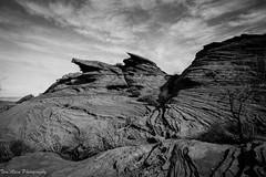Texture, Rock and Sky (samoht35) Tags: arizona blackandwhite bw southwest texture rock landscape nikon rocks desert scenic scene page glencanyon d700 thomasdetert