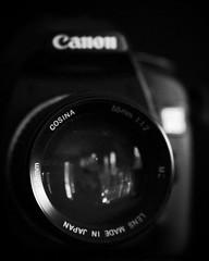 Cosina 55mm f/1.2 on a Canon 30D (jomak14) Tags: camera blackandwhite bw fall monochrome canon 100mm f2 usm lowkey ef picnik lensporn eos1ds ef100mmf2usm canonef100mmf2usm lowlightlens cosina55mmf12 cosinalenson30d alternativelensoneoscamera editedinaviary