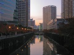 3874 High-Rise Canal (mari-ten) Tags: sunset reflection building tree nature japan skyscraper river tokyo 日本 shinagawa 東京 kanto osaki eastasia 東京都 大崎 2011 品川区 関東地方 201111 20111126