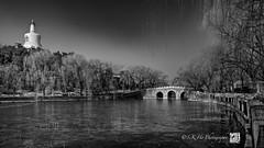 Beihai Park  (Beijing ) (SKHO ) Tags: china park travel blackandwhite monochrome landscape nikon asia beijing   beihaipark   d700 nikond700 afsnikkor1735mmf28difed