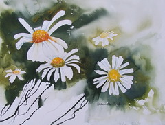 """Oxeye Daisies <a style=""""margin-left:10px; font-size:0.8em;"""" href=""""https://www.flickr.com/photos/66157425@N08/14395441716/"""" target=""""_blank"""">@flickr</a>"""
