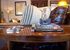 (deanmackayphoto) Tags: door lamp marilyn guitar livingroom pillow couch sofa bottoms renovation decor interiordesign endtable kisforknifeball bookofbiglittle