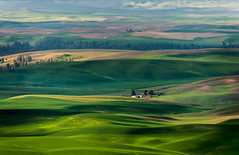 Steptoe Butte (EdBob) Tags: steptoebutte steptoe butte pacificnorthwest washington easternwashington palouse farmland barn red isolated agriculture plowed fields green hills rolling sunset homestead edmundlowe edmundlowephotography landscape travel colfax statepark park spring springtime farm farming wwwedmundlowephotocom