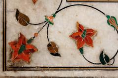 Fort Rouge - Delhi -  Inde (Michel Delfeld) Tags: voyage fleur rajasthan newdelhi smugmug inde olddelhi fortrouge