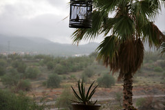 Llueve en Hermosillo (Brujo+) Tags: rain lluvia desert desierto hermosillo aguacero