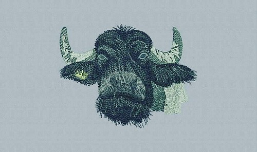 Digitized #buffalo - true flat rate embroidery digitizing - prices start at $5.99 per design. Email your artwork in pdf, jpg or png format to indiandigitizer@gmail.com. http://ift.tt/1LxKtC5 #FlatRateEmbroideryDigitizing #Indiandigitizer #embroiderydigiti
