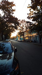 212/365 Golden (zinushana) Tags: projectlife project project365 sun light car road autumn       365