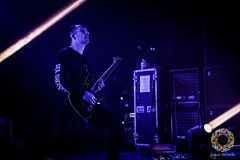 Architects-88 (Paradise Through a Lens) Tags: 17 17october 17october2016 2016 allourgodshaveabandonedus antwerp antwerpen architects biebob brighton centurymedia daybreaker distort england epitaph epitaphrecords gitaar guitar guitarra guitars hollowcrown inatthedeepend josh joshmiddleton leadguitar lostforeverlosttogether middleton newdamage paradisethroughalens rocklive seashepherd seashepherdconservationsociety thankyoutom thirtydaysofnight trix uk unfd unitedbyfate vanhoucke vegan yngwie british concert d500 gig lead maandag metal metalcore monday nikon nikond500 october oktober optreden posthardcore postmetal postmetalcore show stage