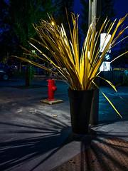 Lyon - Bouche d'incendie. (Gilles Daligand) Tags: lyon rhone boucheincendie firehydrant nuit night planteartificiel