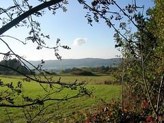 Bad Grund - Blick in die Landschaft (ohaoha) Tags: europa europe deutschland germany alemania niedersachsen badgrund harz landschaft natur wiese himmel blau