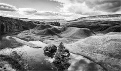 Bollihope . (wayman2011) Tags: canon50d lightroom wayman2011 bwlandscapes mono trees quarrys water pennines dales weardale bollihope countydurham uk