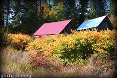 Fall at the farm.... (Garry's lens....) Tags: autumn beauty nature outdoors colors pretty picmonkey