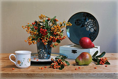 Crisp  Air (Esther Spektor - Thanks for 11+ millions views..) Tags: stilllife naturemorte bodegon naturezamorta stilleben naturamorta composition art creativephotography arrangement artisticphoto autumn crisp air tabletop bpuquet plant berry food fruit pear cup vase plate box decorative pattern ceramics wooden availablelight green yellow red orange teal estherspektor canon