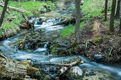 My very own Niagara falls . . . (Dr. Farnsworth) Tags: waterfall sevenbridges kalkaska county flowing liquid movement blur longexposure fernridge mi michigan spring may2106