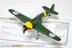 Fokker D21 - Grant Matchett