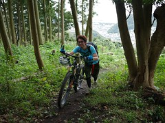 P1030630 (wataru.takei) Tags: mtb lumixg20f17 mountainbike trailride maintenance japan