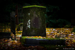 part of the cycle off life ( Jenco van Zalk) Tags: autumn graveyard cemetery green stone tombstone headstone nunspeet death dead leafs grave gravestone cycleofflife