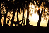 Vita da Spiaggia (Roveclimb) Tags: reunion réunion ile island isola iledelareunion reunionisland holiday vacanza viaggio travel francia france sea ocean oceano mare mer oceanoindiano indianocean beach spiaggia shore plage saintgilles saintgilleslesbains ermitage tramonto sunset dusk red colours colori rosso sun sole soleil shadow ombra silouettes profili profilo profile