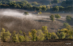 il respiro della terra (Luigi Alesi) Tags: sanseverino italia italy marche macerata san severino campagna paesaggio landscape scenery natura nebbia fog nature foggy alberi trees countryside nikon d750 raw