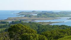 South from Taynish NNR (Niall Corbet) Tags: scotland argyll taynish nationalnaturereserve nnr forest woodland