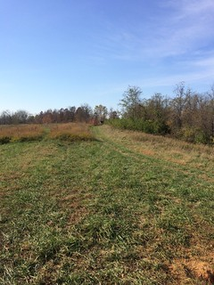 Kentucky Whitetail Hunt 9