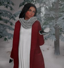 Took a walk (Aviaya Nox) Tags: winter secondlife catwa pixicat little bones besom forest silence snow