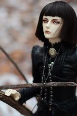 010 (Kumaguro) Tags: bjd dollshe husky dollshehusky dollsheoldhusky autumn earlywinter dark gothic