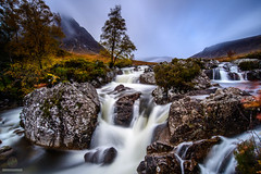 Tree planted by the water (w.mekwi photography [here & there]) Tags: autumn leebigstopper scotland longexposure buachailleetivemor nature landscape trees glencoe boulder uk wmekwiphotography nikond800 rocks