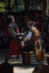 LRM_EXPORT_20161017_141547 (Omar Reina) Tags: medievo medieval caballo espadas caballeros danzantes bufon antorcha bailarinas arabes halcon acrobacias justas duelos batallas