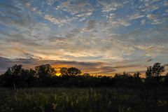 Neat Sunset 1 (thefisch1) Tags: sunset color colorful sky cloud alto cumulus horizon tree line geese flying formation nikon kansas d700